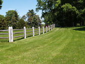 Split rail wood fence by a field — Stok fotoğraf