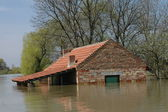 Flood, river, disaster, hurricane, roof, — Stock Photo