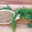 Dill Seed and Weed — Stock Photo #2339847