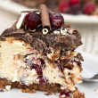 Royalty-Free Stock Photo: Cranberry Chocolate Cheesecake