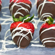 chocolate covered strawberries — Stock Photo