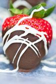Chocolate Covered Strawberry — Stock Photo