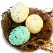 Speckled Easter Eggs - Stock Photo