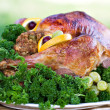 Holiday Turkey — Stock Photo #2539265