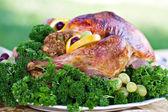 Holiday Turkey — Stock Photo