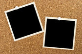Photos on Cork Board — Stock Photo