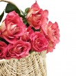 Stock Photo: Basket of Roses