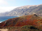 Big Sur landscape — Stock Photo