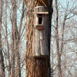 Royalty-Free Stock Photo: Background closeup of a bird house
