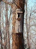 Background closeup of a bird house — Stock Photo