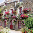 House and flowers — Stock Photo
