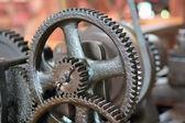 Gear-wheels — Stock Photo