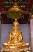 Seated Budda — Foto Stock