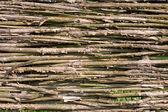 Wattled fence — Stock Photo