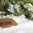 Believe stone in snow - Stock Photo