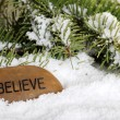 Believe stone in snow - Stockfoto