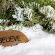 Believe stone in snow — Stock Photo