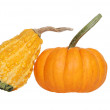 Royalty-Free Stock Photo: Two gourds