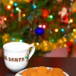 Cookies and Milk For Santa — Stock Photo