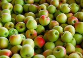 Fondo de manzana — Foto de Stock
