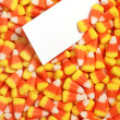 Candy corn with blank card — Stock Photo