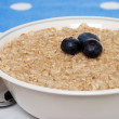 Stock Photo: Closeup oatmeal with blueberries