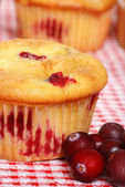 Cranberry lemon muffin with berries — Stock Photo