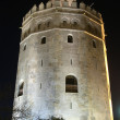 Torre del oro, Seville. — Stock Photo
