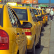 Taxi line - Stock Photo