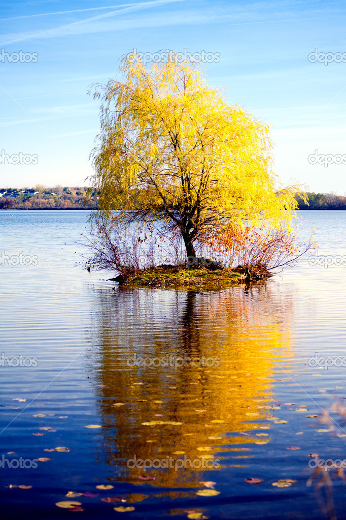 Fall scenery: a tiny island with a tree in the middle of the lake  Stock Photo #2389603