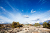 Arizona high desert — Stock Photo