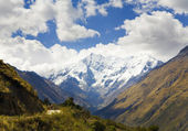 In the Andes — Stock Photo