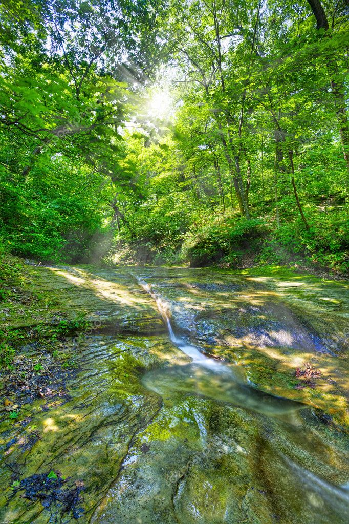 Small spring in Fall Creek Nature Preserve in western Indiana. HDR image — Stock Photo #2523825