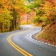 Winding road — Stock Photo