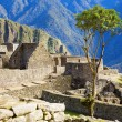 Royalty-Free Stock Photo: Houses of Machu Picchu
