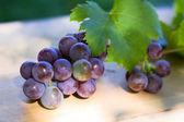 Ripe blue grape — Stock Photo