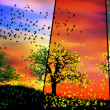 Colorful seasons - Stock fotografie