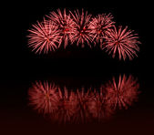 黒い空に赤の花火 — ストック写真