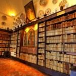 una antigua biblioteca — Foto de Stock