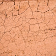 Stock Photo: Dry cracked ground texture