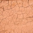 Royalty-Free Stock Photo: Dry cracked ground texture