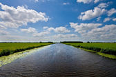 A Dutch canal with grass on both sides — 图库照片