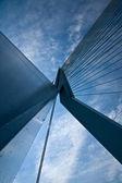 A look upside the Erasmus bridge — Stock Photo