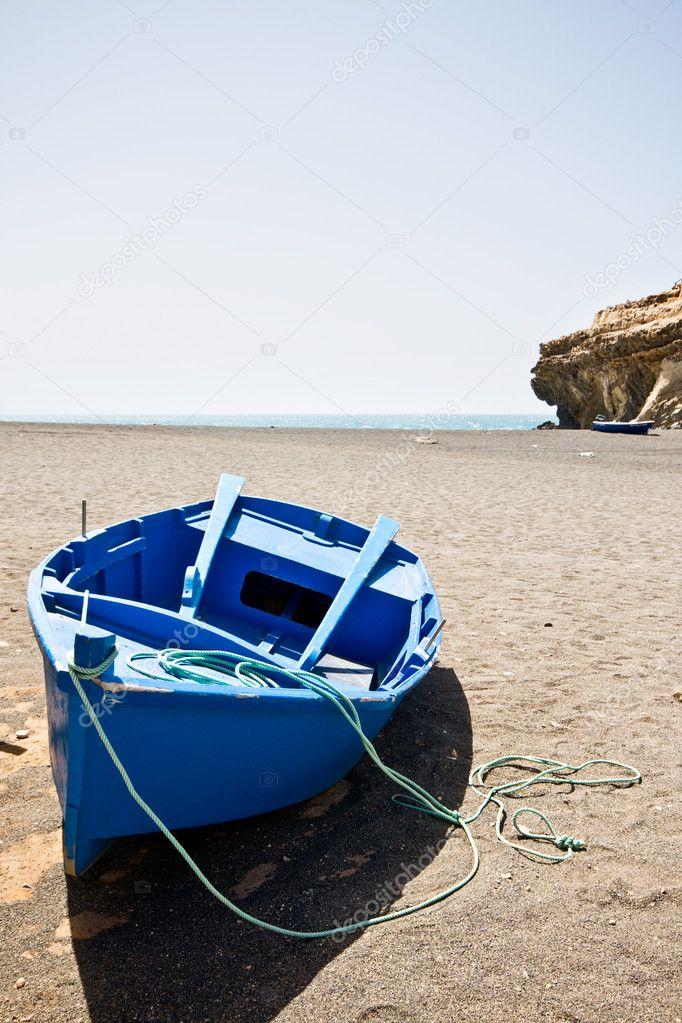 bluebird лодка
