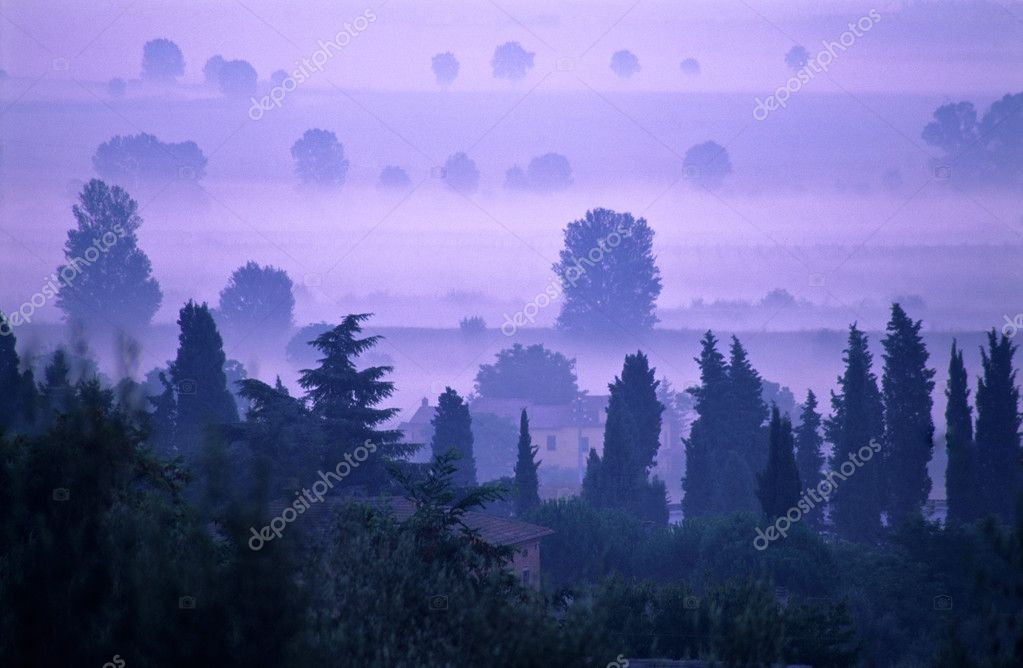 Dawn in Tuscany  Stock Photo #2481278