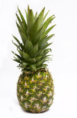 Small pineapple — Stock Photo