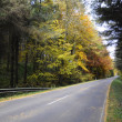 Autumn Forest - Road — Stock Photo
