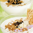 Stock Photo: Yogurt-Quark-dessert