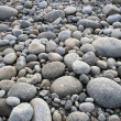 Pebbles on Pebble Beach — Stock Photo