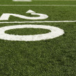 Stock Photo: Twenty yard line
